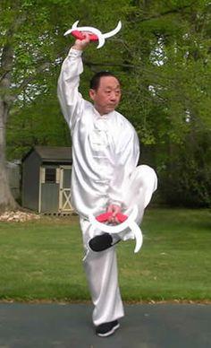 Breve cuaderno de estilos tradicionales de Wushu III – BAGUA CHANG